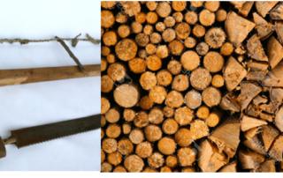zaag en hout